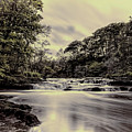 River Avon by Simon Cook