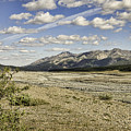 River Bed In Denali National Park by Phyllis Taylor