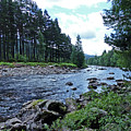 River Dee In Summer by Phil Banks