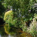 River Eea Cartmel Cumbria by Peter Jenkins