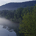 River Flowing In A Forest by Panoramic Images