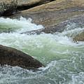 River Frolic 2 by Lynda Lehmann