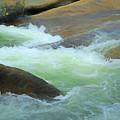 River Frolic 5 by Lynda Lehmann