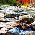 River Gone by Rachel Sheelam