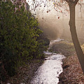 River In Afternoon Sunhaze  by Ingela Christina Rahm