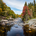 River In Fall by Sandy Roe