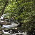River In The Smoky Mountains  by John McGraw