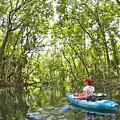 River Kayak by Steve Williams