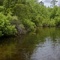 River Landscape by Gwen Vann-Horn