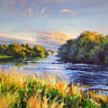 River Moy At Ballina by Conor McGuire