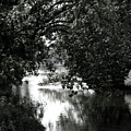 River Passage In Black And White by Paula Joy Welter