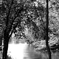River Passage Through Trees by Paula Joy Welter