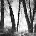 River Reflections by Bob Schlake