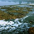 River Subernarekha by Nilu Mishra