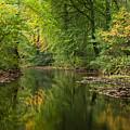 River Teign On Dartmoor by Pete Hemington