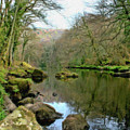 River Teign - P4a16010 by Dean Wittle