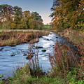 River Wansbeck At Wallington by David Head