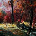 River Ywoigne by Pol Ledent