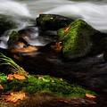 Rivers Edge by Greg Mimbs