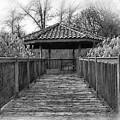 Riverside Pavilion by Kirt Tisdale