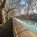 Riverside Shadows Rome Italy by Joan Carroll