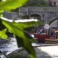 Riverwalk In San Antonio by Carl Purcell