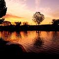 Riverwalk Sunrise  by Rudy Gallegos