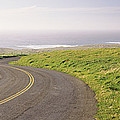 Road Along The Coast, Point Reyes by Panoramic Images