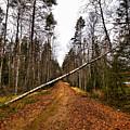 Road Closed by Jouko Lehto