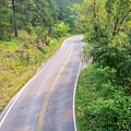 Road In The Black Hills by Jess Kraft