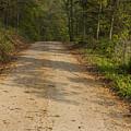 Road In Woods Autumn 2 A by John Brueske