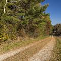 Road In Woods Autumn 6 by John Brueske