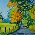 Road Through Barrenridge by Eugenie B Fein