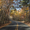 Road To Autumn by Dennis Ludlow