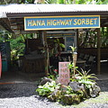 Road To Hana by Michelle Welles