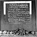 Road To Hana Study 02 by Robert Meyers-Lussier