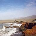 Road To Monterey by Jennifer Ott