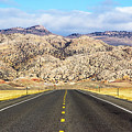 Road To Owl Creek Mountains Wyoming by Amy Sorvillo