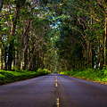 Road To Piopu by Ryan Smith