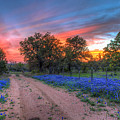 Road To Sunset by Tom Weisbrook