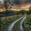 Road To The Sunset by Colin Shearer