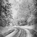 Road To Winter by Angela King-Jones
