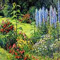 Roadside Garden by Steve Spencer