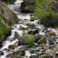Roadside Mountain Stream by Mike McGlothlen