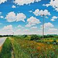Roadside Prairie by Glenn Boyles