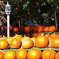 Roadside Pumpkin Stand Expressionist Effect by Rose Santuci-Sofranko