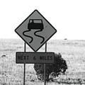Roadtrip 7 by Meagan Paxton