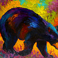 Roaming - Black Bear by Marion Rose