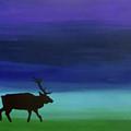 Roaming Elk by Sara Becker