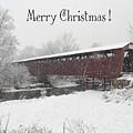 Roann Christmas by Regine Brindle